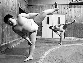 [Image: sumo.jpg]