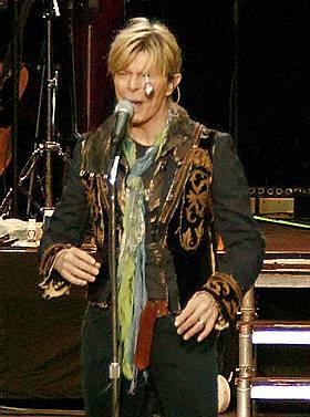 TRUFFET: Noen har kastet en kj�rlighet p� pinne med stor kraft i retning Bowie. Pinnen borer seg inn i venstre �ye, mellom �yelokket og �yet.