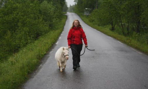 UT P� TUR: Cupido er if�lge b�de eier Silje Fagertun og hestepasser Therese Elstad (bildet), glad i g� p� tur. Han g�r veldressert med langs veien i b�nd, sier de. Foto: Therese Elstad