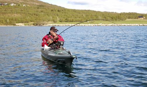 KAJAKK-FISKE: Fisken kjøres. Selve kampen er kanskje ikke så heftig, men når steinbiten kommer ombord i kajakken gjelder det å være klar! Johan Svenson