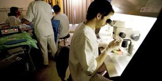 EGG UNDER LUPEN: Laborant Garreth Greggains tar imot Lenes eggposer under mikroskopet etter hvert som de hentes ut.  FOTO: Anne Elisabeth N�ss