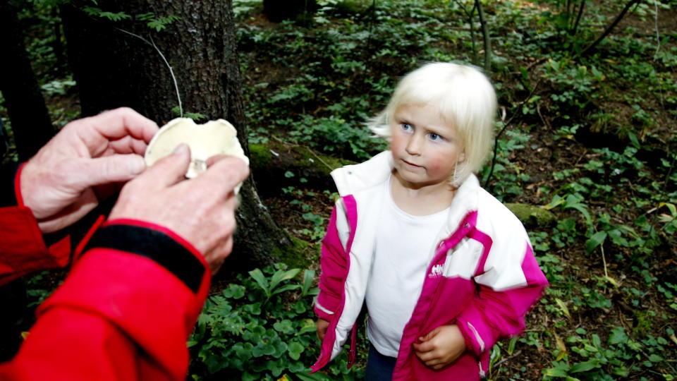 L�RER OM SOPP: Anniken Kolflaath Bj�rgo (4) er p� sopptur i regi av Oslo sopp- og nyttevekstforbund med far Leif (32) for � l�re om sopp. Foto:Jacques Hvistendahl (Dagbladet)