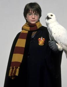 Betalte over 1,3 mill. for Potter-bok