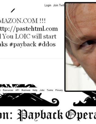 WikiLeaks-tilhengere p�grepet for dataangrep