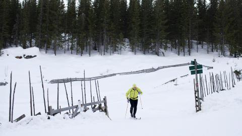 Foto: Agnete Brun / Dagbladet
