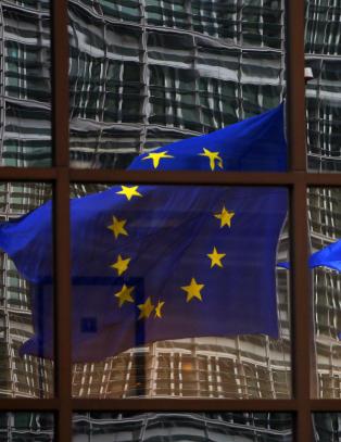 EU-tilhengere st�r p� sitt