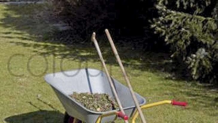 OPPRYDDING. Få unna visne blader, gress og greiner. Det er hageeskpertens sterkeste startråd. FOTO: Colourbox.com