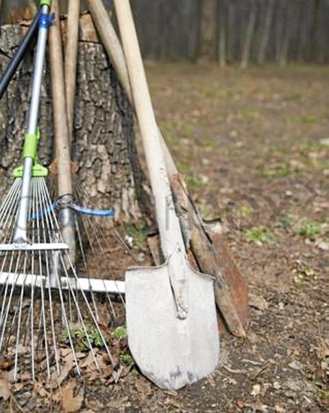 HAGEREDSKAPER: Sats på riktige hageredskaper slik at arbeidet blir lettere. Vi gir deg de viktigste rådene. Se egen ramme.  FOTO: Colourbox.com