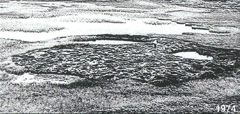 Dette bildet viser Dovre i 1974 - du ser flere bilder nedover i saken.