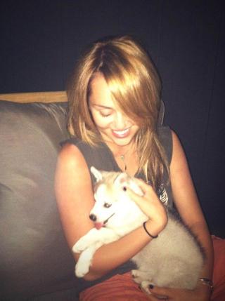 H�YT ELSKET: Valpen Floyd bader og ser �Breaking Bad� med Miley Cyrus. Foto: STELLA PICTURES