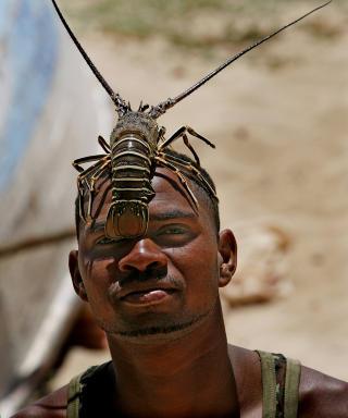 HUMMER I PANNA: En kappverdiansk fisker viser stolt fangsten sin ved � legge en nyfanget lokal hummer p� hodet. Hummer er en spesialitet som b�de er god og billig p� Kapp Verde.  Foto: EIVIND PEDERSEN