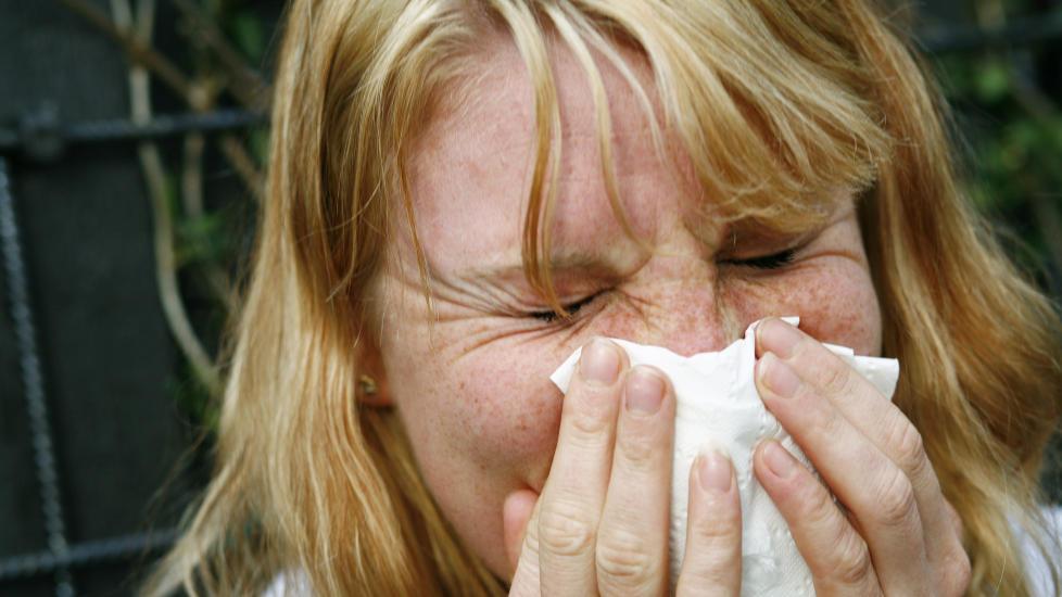 ATCHOO!: Det er ubehagelig � bli syk, og h�sten er h�ytid for luftveissykdommer. Foto: Sara Johannessen / SCANPIX