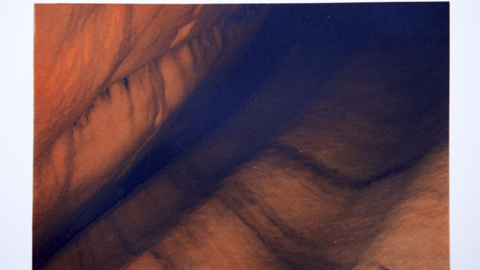 SKAL STILLES UT: - Bildet m� sies � inneha en viss kj�delig kvalitet som f�r meg til � tenke p� arbeidene til for eksempel den tyske kunstneren Wolfgang Tillmans, sier kunstkritiker Erlend Hammer. Kunstverk: Dronning Sonja/Foto: Stefan Lindblom/Stella Pictures