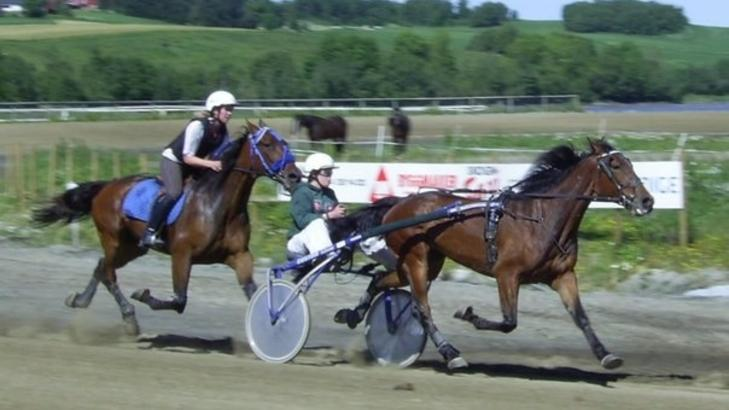 2006:  Iris Ramdahl i sulkyen i en kjapp treningsrunde med Flying Canon. Foto: Toya Ramdal.