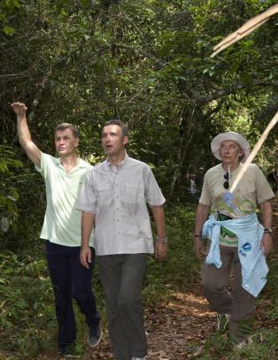 Norsk regnskogbonus til Brasil