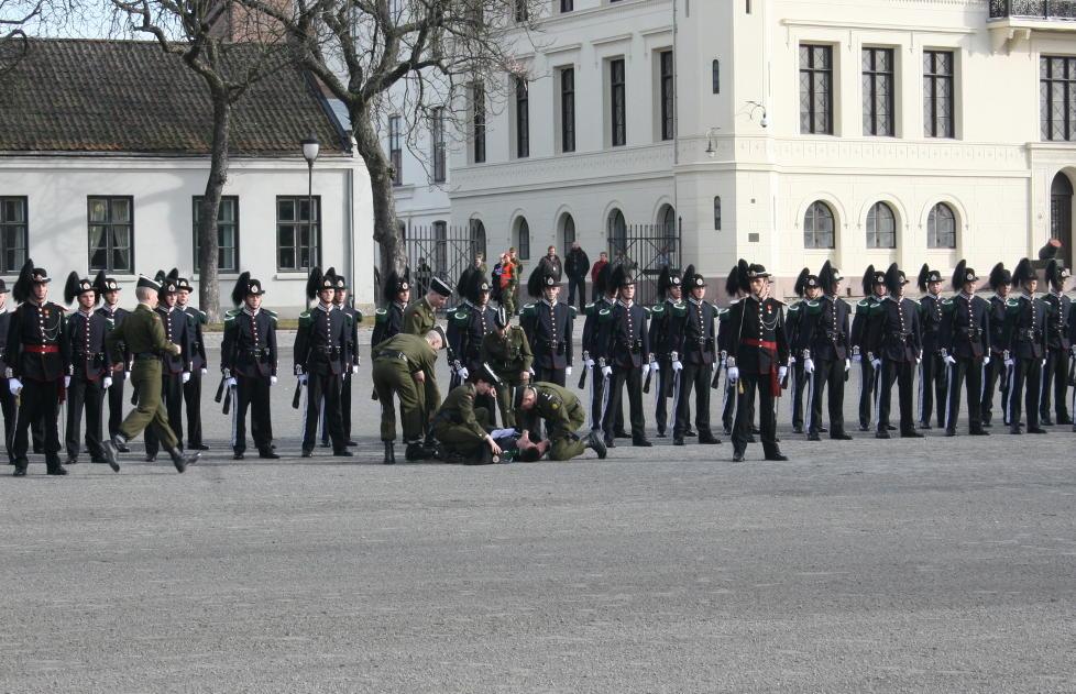 UHELDIG:  Gardisten gikk rett i bakken bare minutter før det kongelige besøket. FOTO: Leserbilde