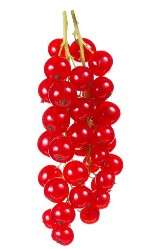 BEDRE VALG:  Rips gir mindre magevondt enn kirseb�r. Foto: Colourbox