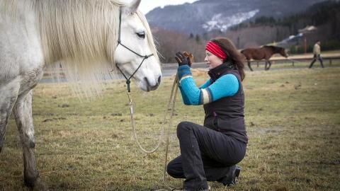 HEST ER BEST: - Hesten bryr seg ikke om hva du sier, om du er tykk eller tynn. Det er en mer direkte kommunikasjon mellom hest og menneske, det er det indre spr�ket som teller slik som blikk og pust. Dette passer godt i terapi for mennesker med spiseforstyrrelser. Hesteterapi gir pasienten relasjonskompetanse, sier psykolog Anita Veimo til Dagbladet. Foto: OLE MORTEN MELG�RD/DAGBLADET