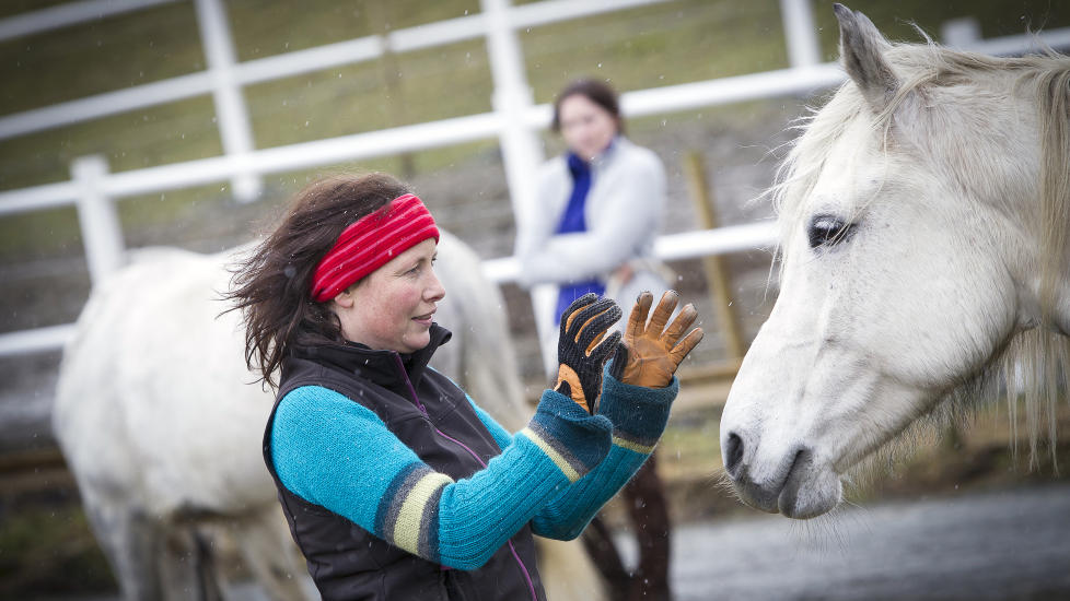 KOMMUNISERER MED HESTEN: Psykolog Anita Veimo dirigerer hun hesten sin rundt bare med kroppsspr�k, ber�ring, lavm�lt snakk og ansiktsuttrykk. Veimo setter seg p� huk og vifter hesten til og fra seg med lette bevegelser med hendene. 11 �r gamle El-Key oppf�rer seg nesten mer som en lydig hund enn som en stor hest der den tripper rundt henne. De stopper ofte og koser med hverandre. Foto: OLE MORTEN MELG�RD/DAGBLADET