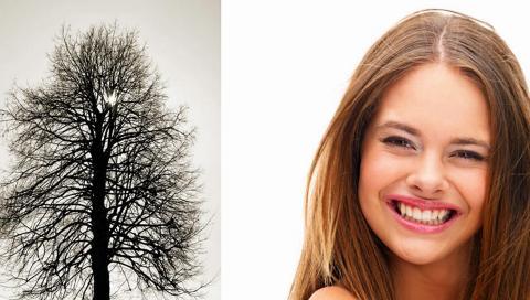 KALDT LYS: N�r tr�rne har lite eller ingen blader vil ogs� dagslyset v�re skarpere og hardere mot ansiktet. Hold derfor sminken s� naturlig og forsiktig som mulig. FOTO: Crestock.