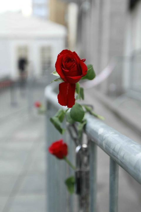 <b>ROSE:</b> Roser er festet til gjerdene rundt Oslo tingrett.