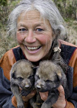 LANGEDRAG: Tuva Thorson med to ulvevalper.  Foto: OLE C.H. THOMASSEN