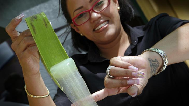 VERDIFULLT: - Dette er verdens beste aloe vera, påstår guiden Naomi som viser hvordan plantens innmat er som en geleaktig masse. Foto: Eivind Pedersen