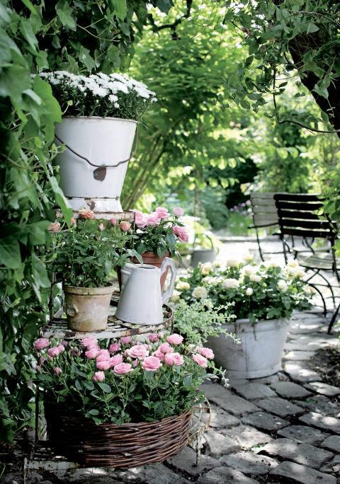 BEDRE JORD: Skal du plante i krukker og potter kreves bedre jord enn om du bare skal tilf�re jord i et eksisterende bed.  FOTO: Flora Dania