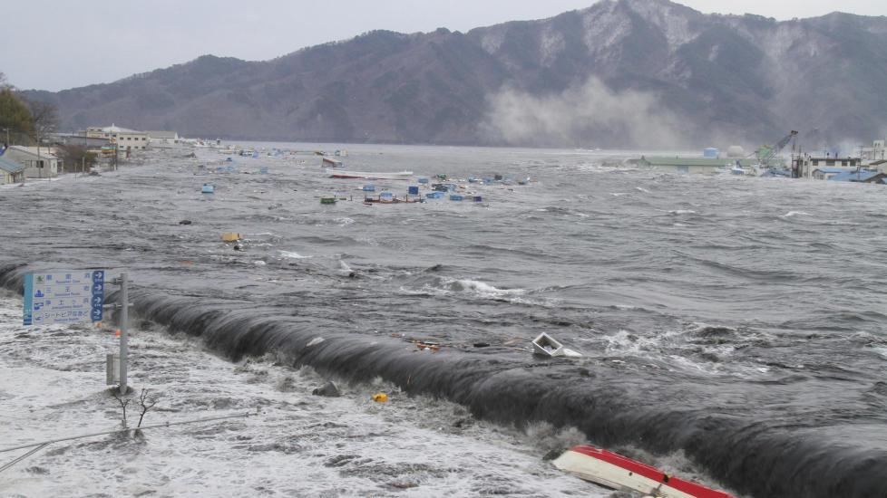 HJERNEN KRYMPET PÅ TSUNAMIOFRE: Blant ungdommene som viste symptomer på PTSD etter tsunamien i Japan i fjor, fant de at «orbitofrontal cortex», et område i hjernebarken som styrer evnen til å ta avgjørelser, og som regulerer følelser, hadde krympet. Foto: MIYAKO CITY / REUTERS / NTB SCANPIX