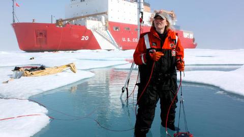 FANT MASSE PLANKTON: Forskerne tror nå at smeltende is kan fungere som et forstørrelsesglass eller takvindu, og derfor gi gode forhold for fytoplankton. Foto: NASA's Goddard Space Flight Center / Kathryn Hansen