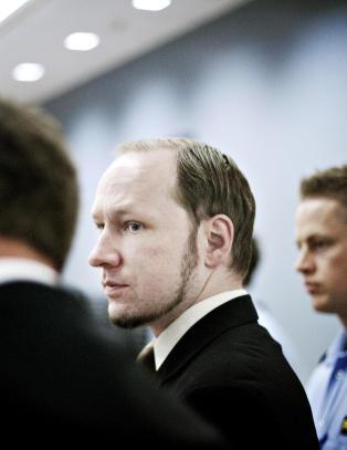 advokat torgeir knutsen
