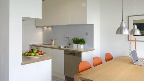 DISKR� SONE: Arkitekten forlenget og fornyet selv kj�kkenet med blant annet Ikea-moduler. Duse gr�farger gir ro i rommet.  Foto: Nils Petter Dale