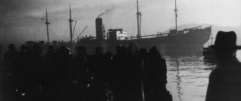 En rekke b�ker p� gang om Norges holocaust