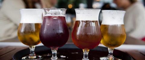 Forsker: Muslimsk p�virkning gj�r at unge drikker mindre