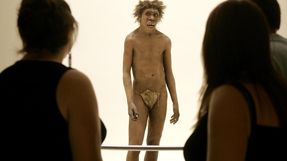 VIL KLONE UTDØDD ART: En professor ved det prestisjetunge universitetet Harvard ønsker å komme i kontakt med en «eventyrlysten kvinne» som, ved hjelp av DNA fra fossiler, kunne tenke seg å bære fram en neandertaler. Foto: NTB Scanpix