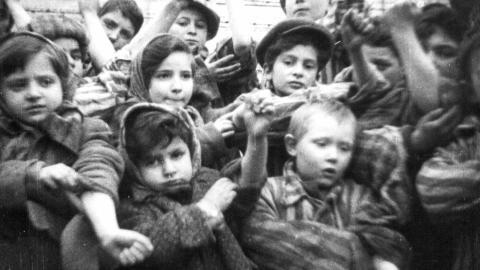BARN: Dette bildet viser noen av de om lag 600 barna som overlevde konsentrasjonsleiren Auschwitz II-Birkenau. Foto: Reuters / Ho-Auswhwitz Museum / Scanpix