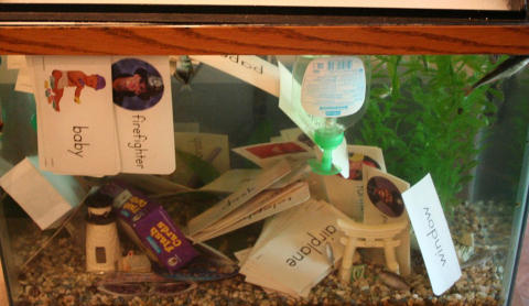 I AKVARIET: Det tok bare et par minutter fra sønnen min hadde hatt oppvaskmiddel i akvariet til alle fiskene døde. Etterpå slengte han oppi både mobiltelefonen min og alt annet jeg hadde i håndveska.FOTO: Shitmykidsruined.com