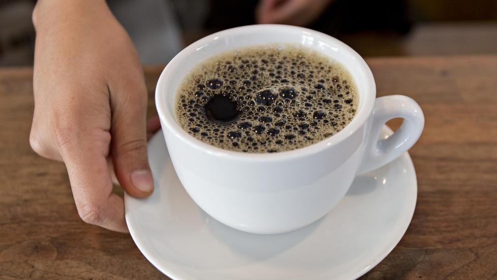 Kaffe frø til salgs Blad kaffe