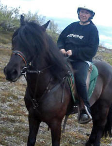 Mattilsynet skj�t feil hest