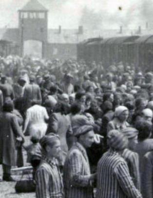 Auschwitz-museet lanserer nettside p� arabisk og farsi