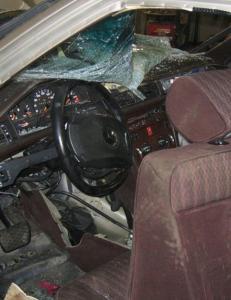 Har gransket 190 ulykker: D�de da 40 kilo kj�tt kom rasende fram fra baksetet