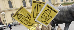 Tidligere leder, nestleder og to ansatte i SOS Rasisme siktet for  grovt bedrageri