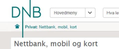 Nye problemer for DNBs nettbank