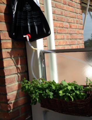 Smart gj�r-det-selv-triks redder plantene dine i sommer