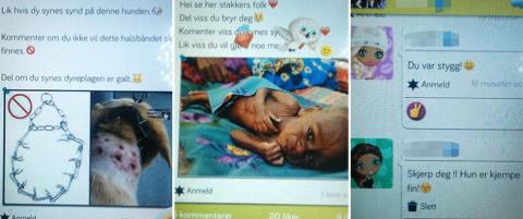 - Sm� barn deler bilder av sultende barn og mishandlede katter med utstoppede �yne