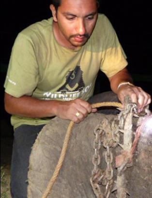 Raju gr�t t�rer da han ble reddet etter 50 �r med nagler, lenker og juling
