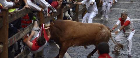 Brutal avslutning p� oksel�pene i Pamplona