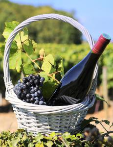 Fra verdens beste viner til verdens mest oppskrytte