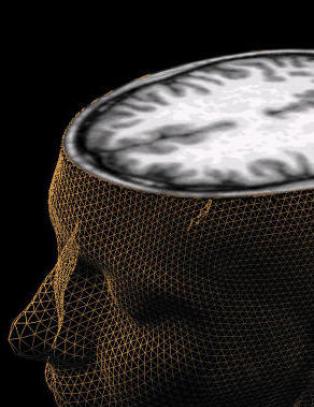 V�r gjennomsnittlige IQ stuper: - Teknologi blir bedre, men mennesker blir dummere