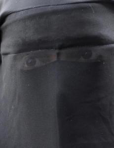 Imam raser mot nikab-forbud p� h�yskole